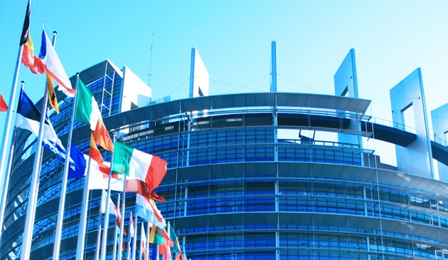 Why the European elections matter