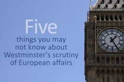 Video on: Westminster's scrutiny of European affairs