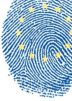 EU JHA co-operation: After Lisbon, reality bites