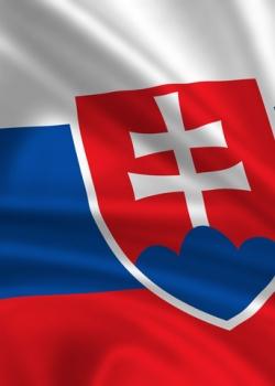 The Slovak roadblock for the Lisbon treaty