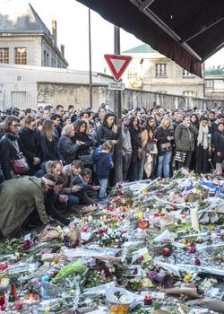 Terrorism in Paris: Aux armes, citoyens?