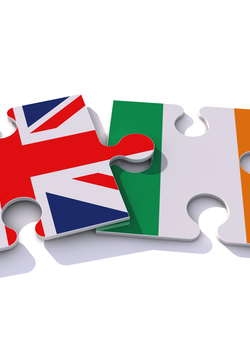 Webinar on 'The future UK-EU relationship: An Irish perspective' with Thomas Byrne, Minister of State for European Affairs, Ireland