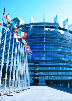 An EU senate is superfluous
