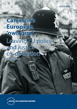 Cameron's European 'own goal'